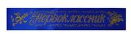 Ленты для Первоклассников (синяя, атлас)